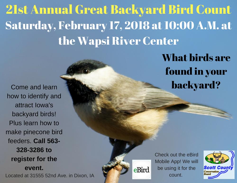 Great Backyard Bird Count | Scott County, Iowa