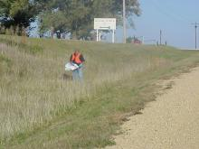 Cleanup volunteer in the ditch along the road.