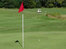 Golf ball and hole flag.