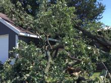 Storm damage tree resting on garage roof.