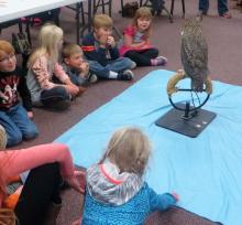 owl at the school with kids photo