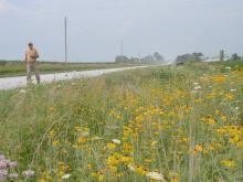 Man walking along roadside prairie.