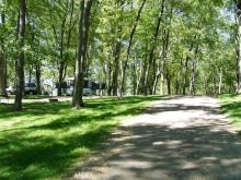 A shaded road in the campground.