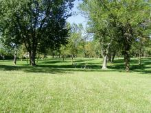 A look across wide areas with trees and tables.