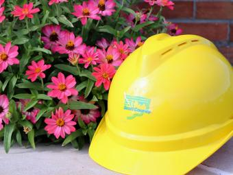 September flowers and a hard hat.