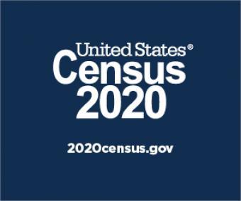 United States Census 2020. 2020census.gov