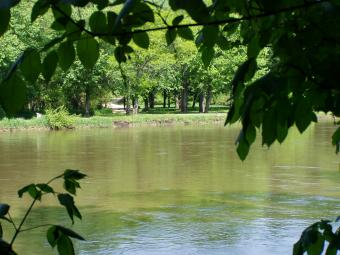 The Wapsipinicon River seen through tree branches.