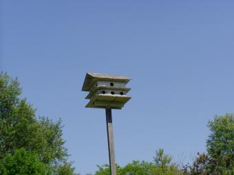 A birdhouse apartment at Wapsi Center.