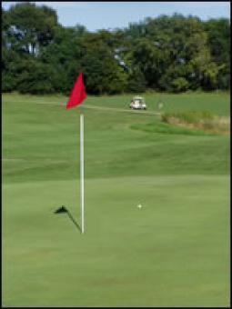 A golf hole.