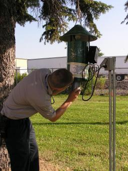 staff member checking a mosquito trap hanging from a tree