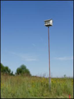 A birdhouse.