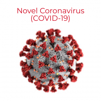 coronavirus image with sphere with red;