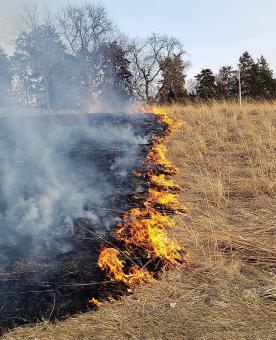 A controlled burn.