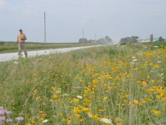 Man walking along roadside prairie.
