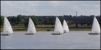 Several sail boats on the river.