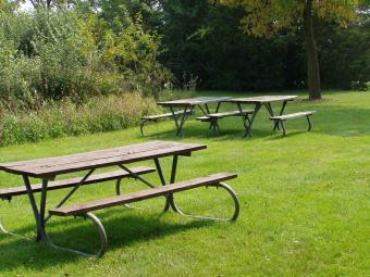 Picnic tables at this picnic area.