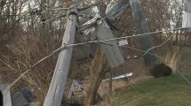 Down power line with metal debris in nearby trees.