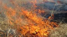 a grass fire.