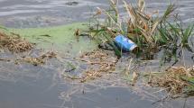 Pop bottle floating in flood waters.