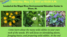 Wild Edible plants workshop at Wapsi River center flyer