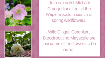 Wildflower hike flyer for event at Wapsi
