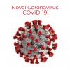 Illustration of Novel Coronavirus (associated with COVID-19)