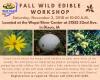 flyer giving information about workshop
