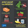 Infographic detailing steps to take to prevent norovirus